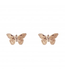 Butterfly Studs Rose Gold